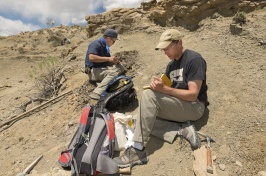 Two male paleontologists collect rocks on a dusty hillside