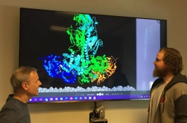Rick Cote and Michael Irwin look at a model of the activated complex of the enzyme PDE6 dimer.