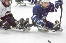Sled hockey empowers UNH grad to destigmatize disability