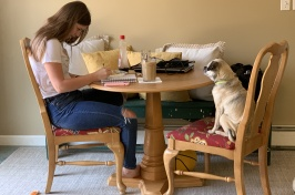 Student studying at kitchen table with her dog on a chair
