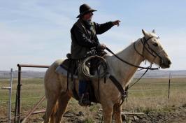 Man rides a horse in rural America