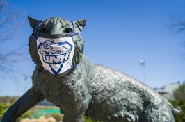 Wildcat Statue wearing a mask