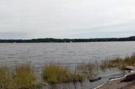 The Importance of Estuaries