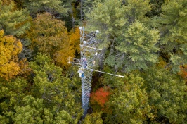 Drone image of research tower in forest in autumn
