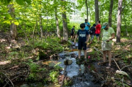 Students and teacher in a wooded stream