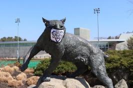 wildcat statue wearing mask