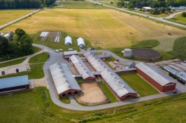 UNH Dairies Receive 2019 Quality Milk Award from Dairy One