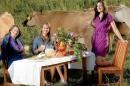 joanne curran-clentano with students at dinner table in field with cows