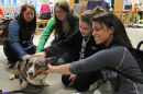 students with dog during pet therapy