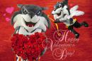 valentines with wild-e-cat