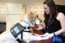 UNH alumna Jennifer Blessing working with a service dog in training
