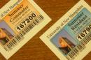 summer permits