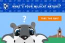 UNH Wildcat Quiz graphic - What's your Wildcat nature?