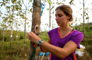 UNH grad student Katherine Sinacore studying tropical trees