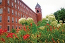 flowers in front of UNH Manchester