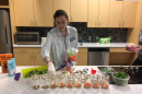 a UNH Health Services nutritionist