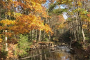 Oyster River in autumn