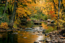 a river in autumn in NH