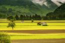 image of rural landscape, pexels.com image