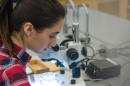 A UNH student in a laboratory, working