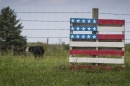 Photo of American flag in grassy field.