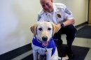 Charlee, therapy dog, and Chief Paul Dean