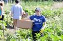 Students volunteer at the NH Food Bank garden