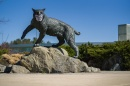 Wildcat statue with mask