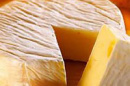Summer Research Award Aids in Archaeological Study of Cheese