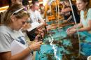 students studying marine life