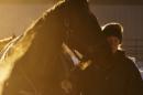 A UNH horse