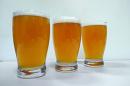 "Photo of UNH-brewed beer,  ""George Squashington"""