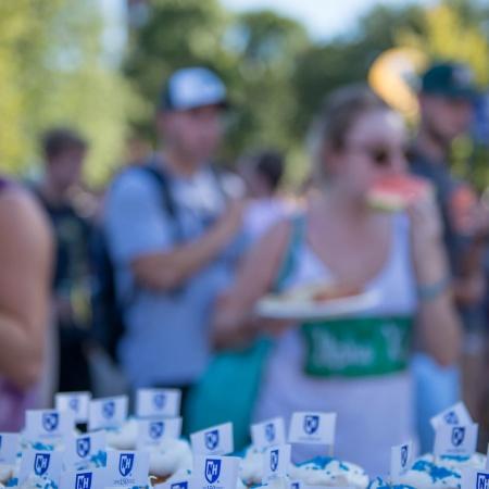 UNH University Day cupcakes