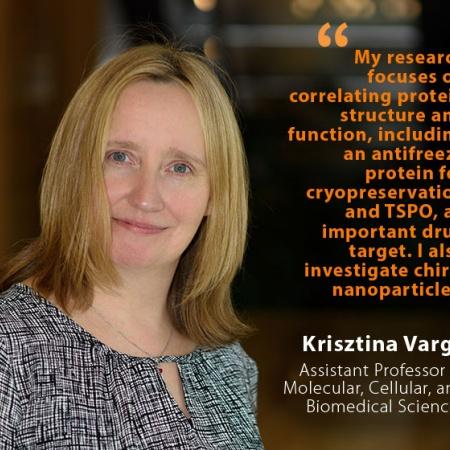 Krisztina Varga, UNH Assistant Professor of Molecular, Cellular, and Biomedical Sciences, and quote