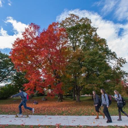 UNH campus fall