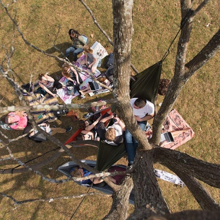 Hammocks on T-Hall lawn at UNH