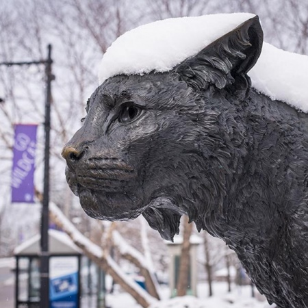 Wildcat statue with snow