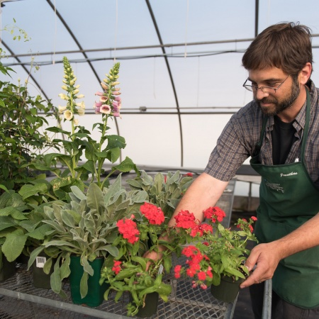 Macfarlane Greenhouse at UNH