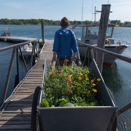 A woman pulling a cart full of plants onto a dock