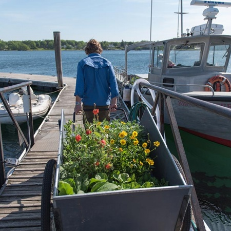 UNH master gardener with cart of flowers