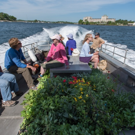 Plants and people on a boat