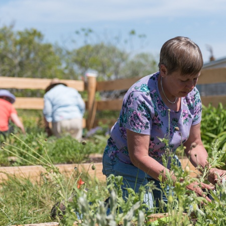 Marie Nickerson, UNH Cooperative Extension master gardener