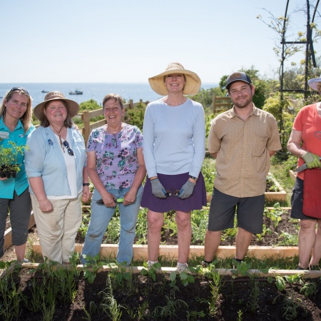 Team of gardeners at Celia Thaxter's 2016 island garden