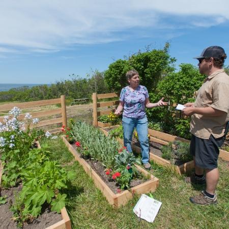 Celia Thaxter's Island Garden