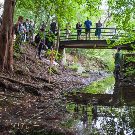 UNH COLSA students studying outdoors by the ravine