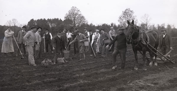 UNH potato planting, historic