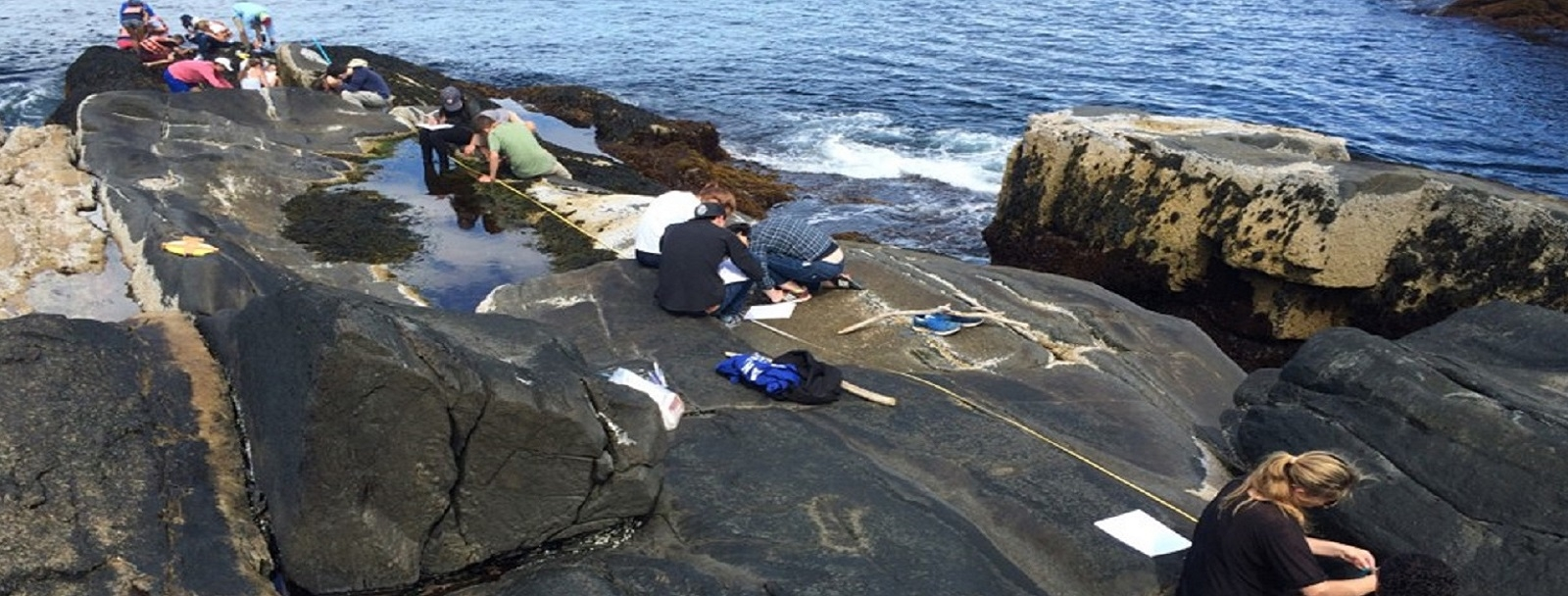 Students measuring data on rocks at the Shoals Island Marine Lab